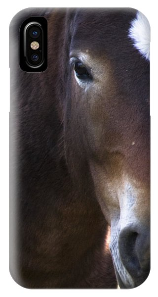 Wild Mustangs Of New Mexico 42 IPhone Case