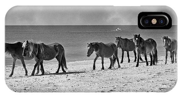 Wild Mustangs Of Shackleford IPhone Case