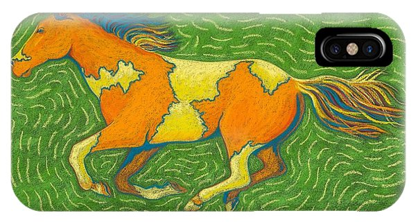 iPhone Case - Wild Paint by Cynthia Sampson