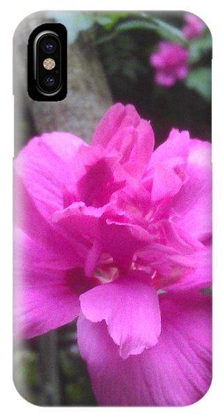 Wild Pink Rose Phone Case by Kim Martin