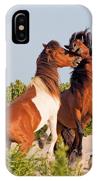 Wild Ponies At Play IPhone Case