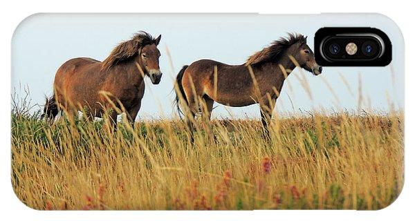 Wild Ponies On Exmoor IPhone Case