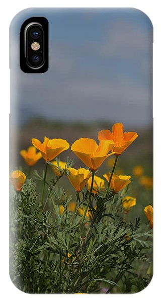 Wild Poppy IPhone Case