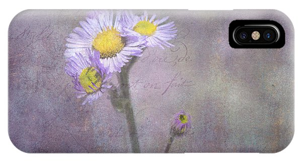 Wild Purple Aster  IPhone Case