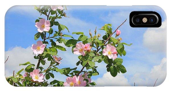 Wild Roses In June IPhone Case