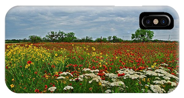 Wild Texas IPhone Case