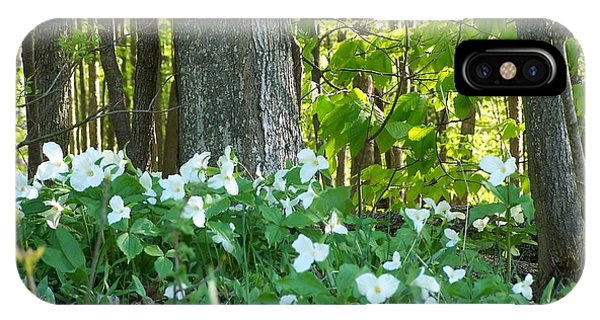 Wild Trilliums In The Woods IPhone Case