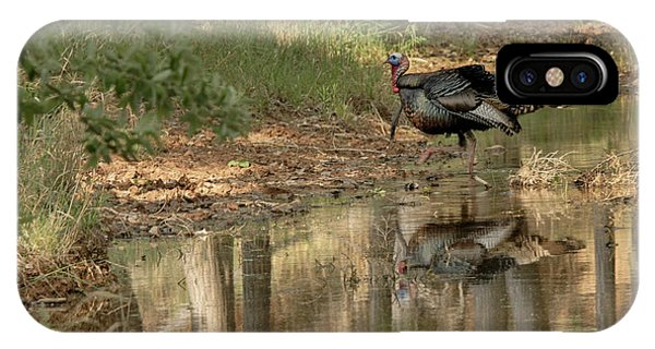 Wild Turkey Crossing IPhone Case