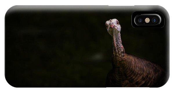 Wild Turkey Portrait IPhone Case