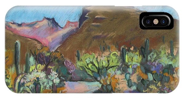 Wild Tuscon IPhone Case