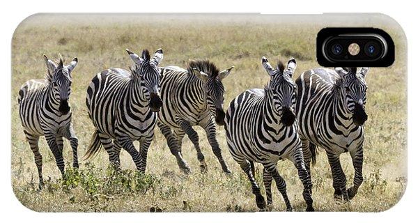 Wild Zebras Running  IPhone Case