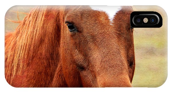 Wildfire - Equine Portrait IPhone Case
