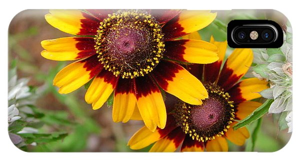 Wildflower 5 Phone Case by Michael Rushing