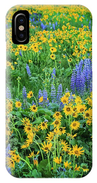 Wildflower Bounty IPhone Case