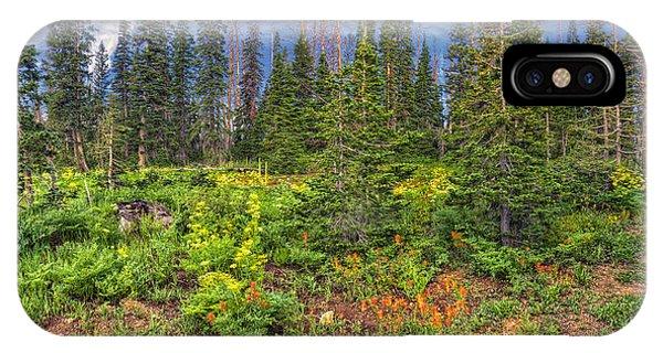Wildflower Cascade IPhone Case