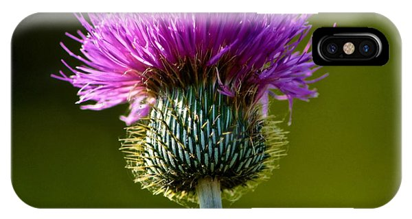 Wildflower Macro IPhone Case