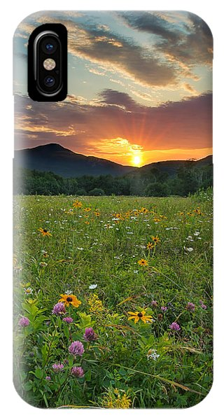 Wildflower Sunset IPhone Case
