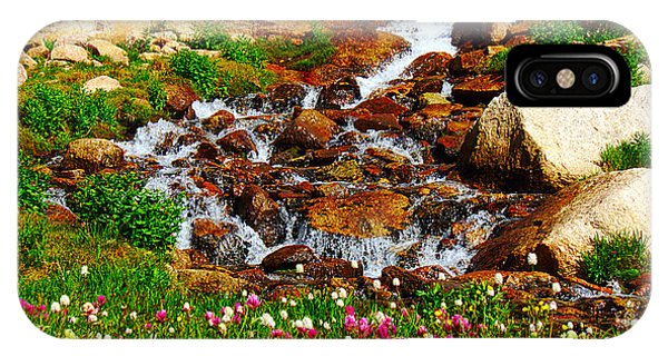 Wildflower Waterfall IPhone Case