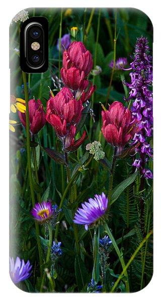Indian Peaks Wilderness iPhone Case - Wildflowers A Bloomin by Steven Reed
