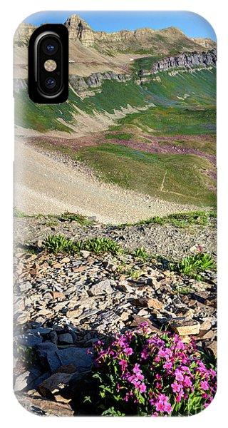 Wildflowers Above Timpanogos Basin At Sunrise IPhone Case