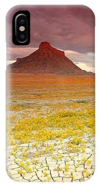 Wildflowers At Factory Butte. IPhone Case