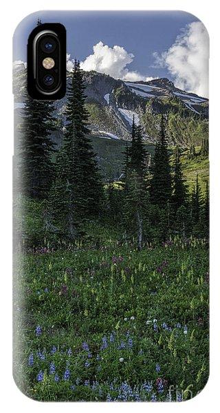 Wildflowers At Rainier IPhone Case