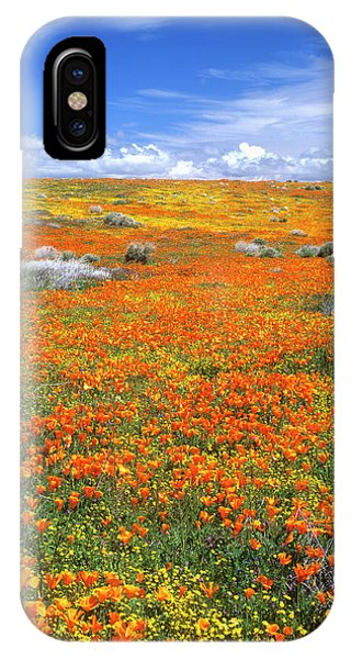 Wildflowers At The California Poppy Phone Case by John Alves