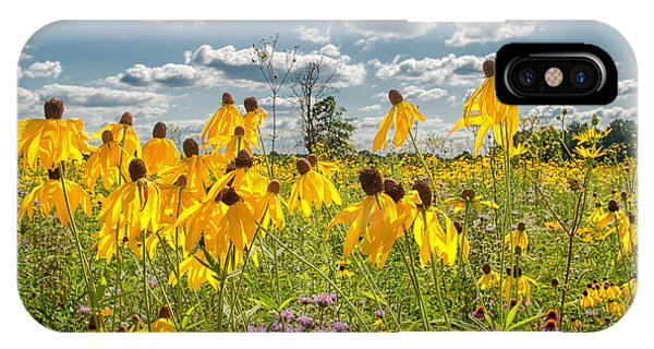 Wildflowers Dance IPhone Case