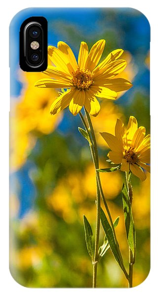Teton iPhone Case - Wildflowers Standing Out by Chad Dutson