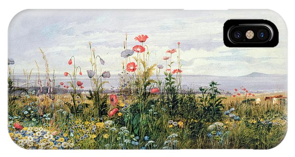 Wildflowers With A View Of Dublin Dunleary IPhone Case