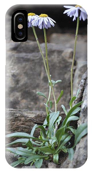 Wildflowers4 IPhone Case