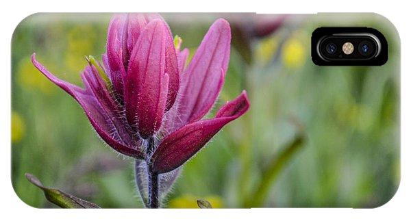 Wildflowers5 IPhone Case