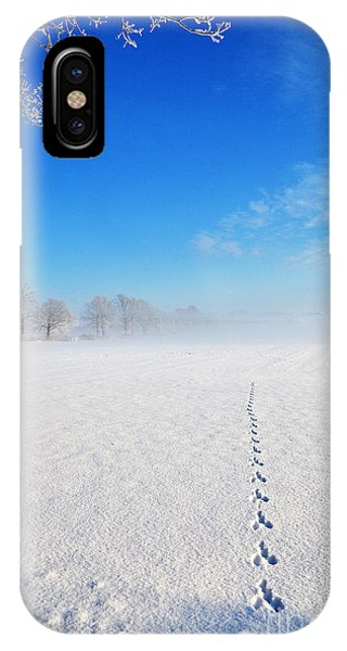 Wildlife Tracks IPhone Case