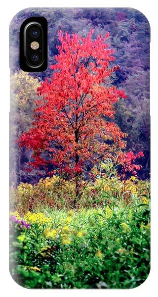 Fall Flowers iPhone Case - Wildwood Flowers by Karen Wiles