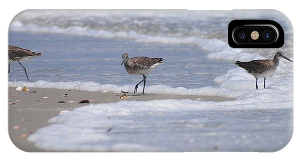 Willets On Ocracoke IPhone Case