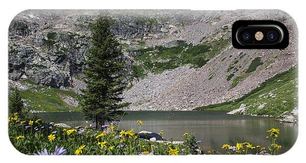 Willow Lake IPhone Case