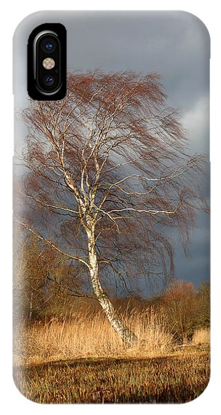 Wind Direction IPhone Case