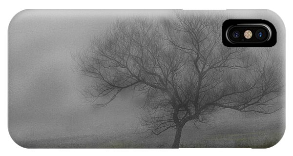 Wind Swept Tree IPhone Case