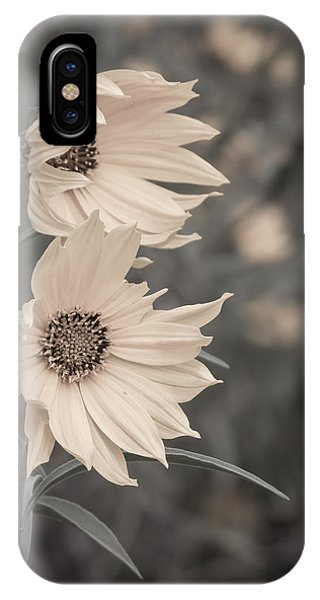 Windblown Wild Sunflowers IPhone Case