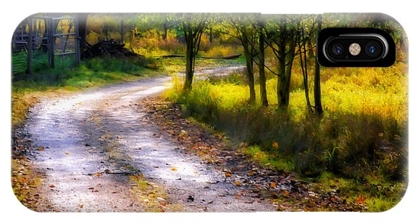 Winding Path In Autumn IPhone Case