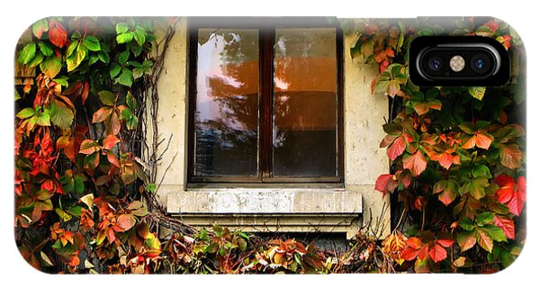 Window And Autumn Ivy IPhone Case