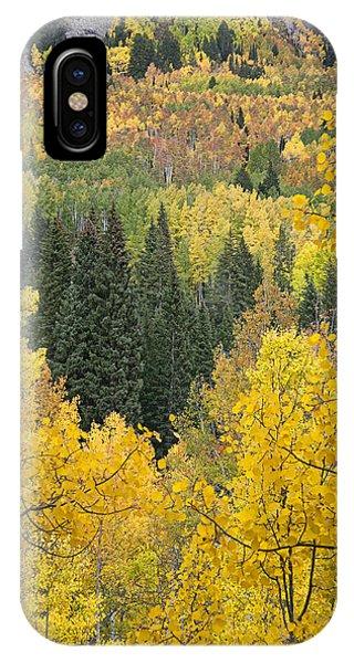 Window To Autumn Splendor IPhone Case