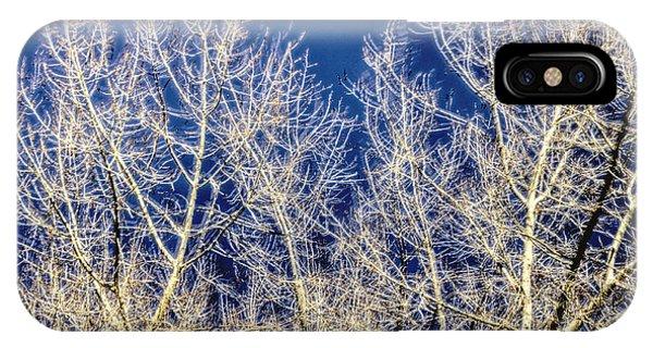 Windy Trees 12999 IPhone Case