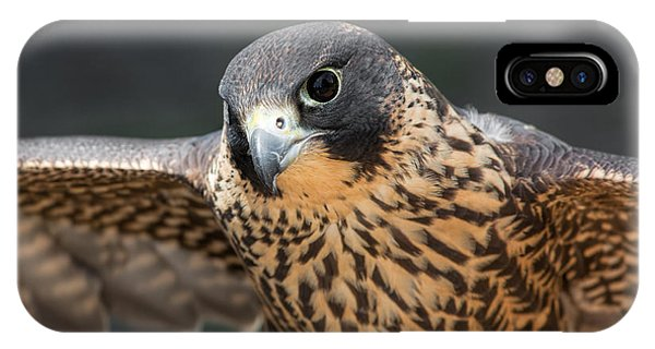 Winged Portrait IPhone Case