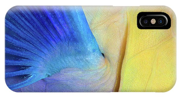 Fins iPhone Case - Wings by Andrey Narchuk