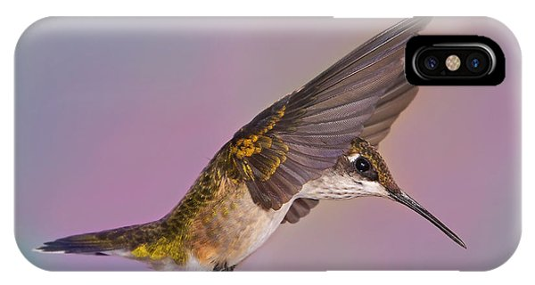 Wings Of A Hummingbird IPhone Case