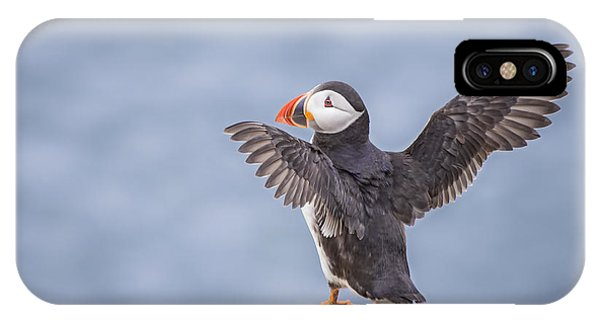 Ireland iPhone Case - Wings To Fly  by Evelina Kremsdorf