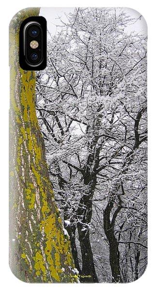 Winter  4  Phone Case by Vassilis Tagoudis