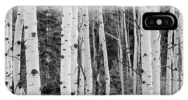 IPhone Case featuring the photograph Winter Approaches by David Millenheft