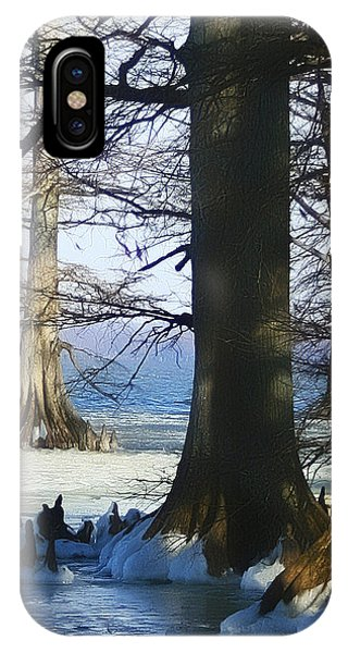 Winter At Reelfoot Lake IPhone Case
